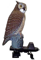 BirdGard Electronic Bird Repeller moves pest birds