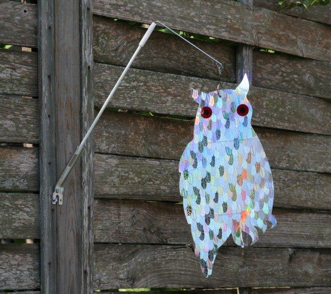 Holographic Guardian Owl