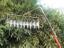 Bird Chaser Optical Bird Deterrent