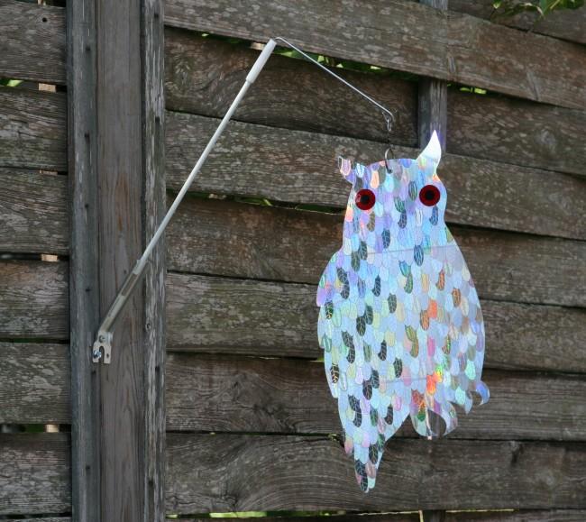 Holographic Owl with Swivel Bracket